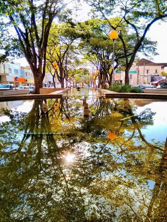 Guaxupé Minas Gerais fonte: i.pinimg.com