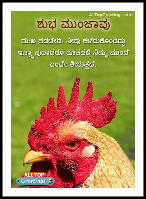 Kannada Dialy Good Morning Greetings Wishes Kannada Quotations