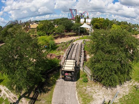 Skyride | Busch Gardens Tampa