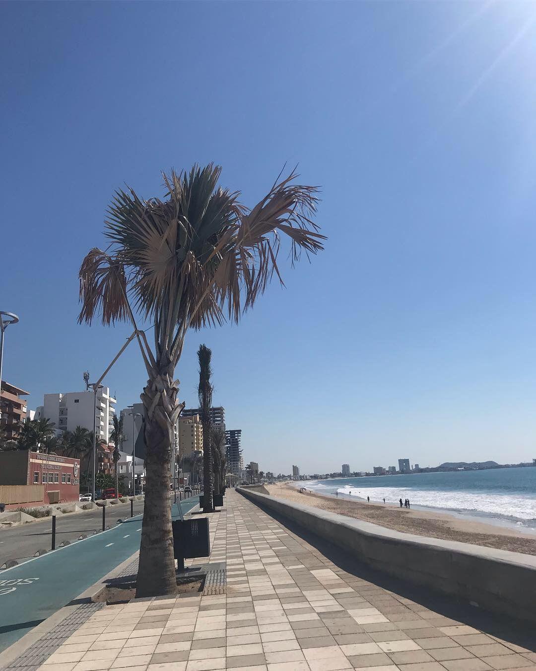Mazatlán Sinaloa Beach Malecon
