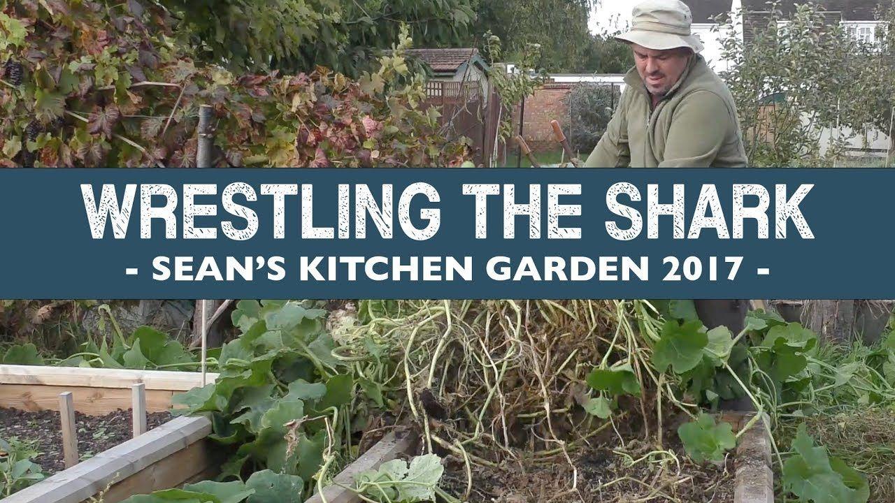 Sean\'s Kitchen Garden S5 E50: Wrestling the Shark - October | Sean ...