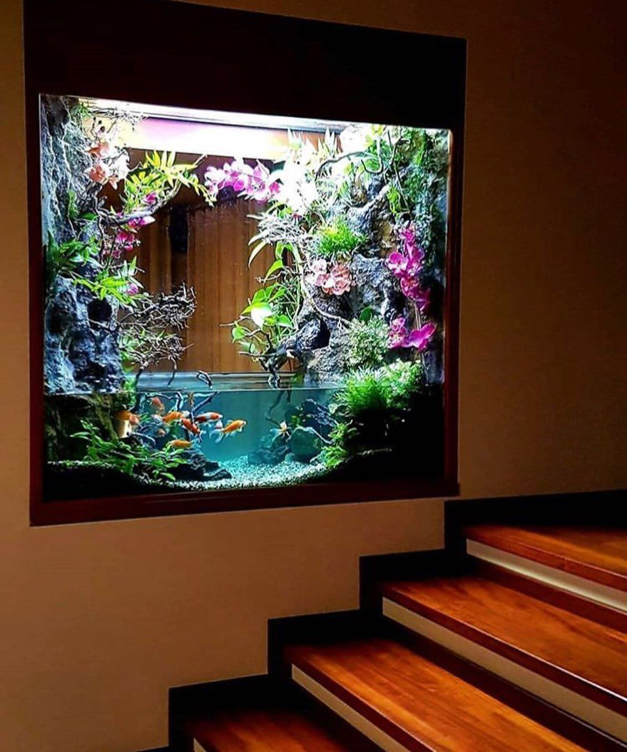 Goldfish Wall Aquarium Ideas For Home Interior All Credit To
