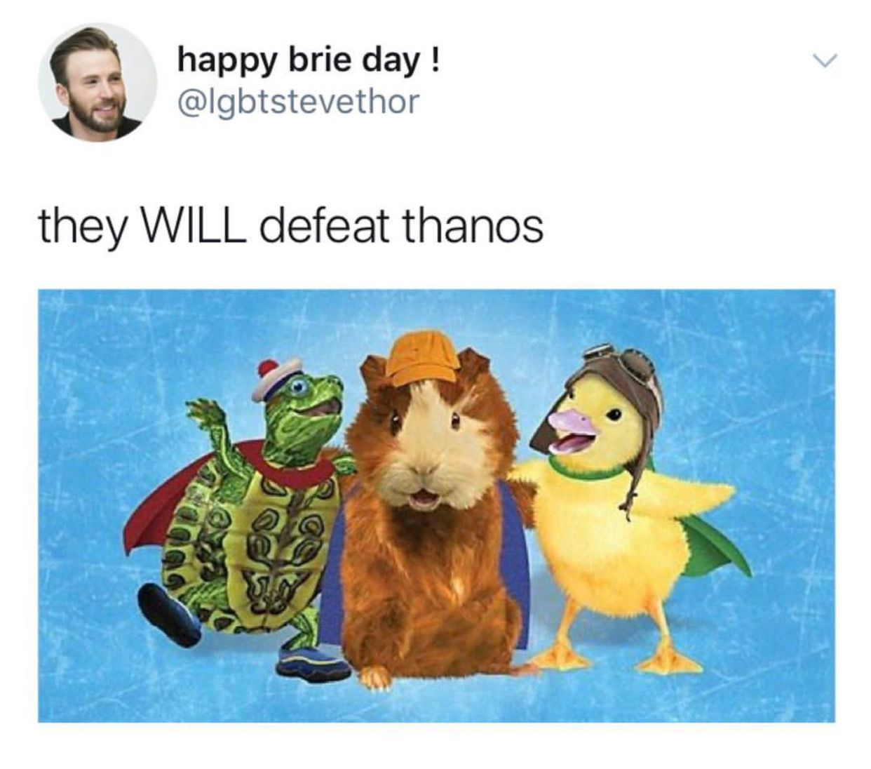Pin By Trout On Marvel Avengers Funny Wonder Pets Marvel Memes