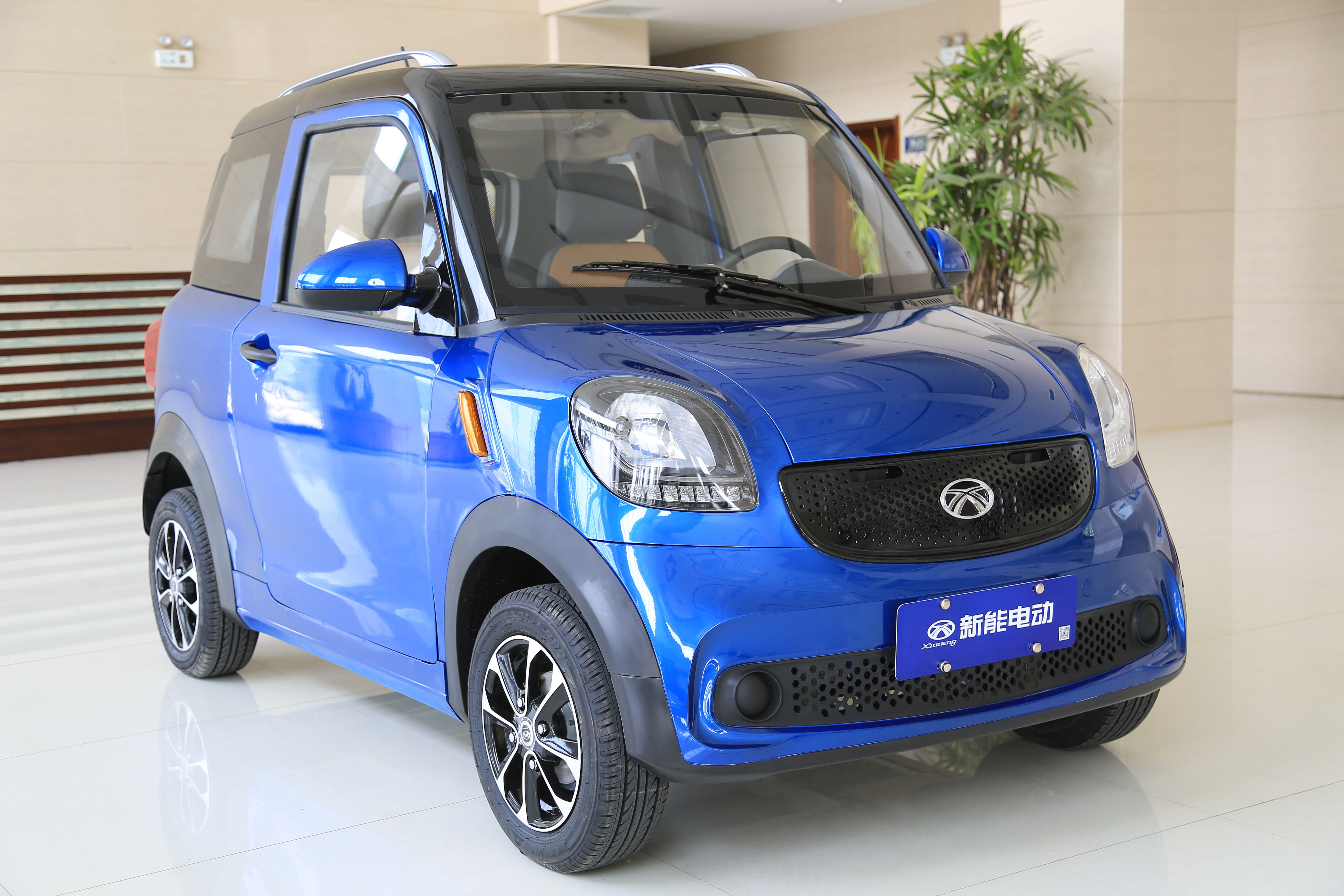 Low Speed Electric Car Maker From China