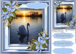 Mooie zwaan op het meer,