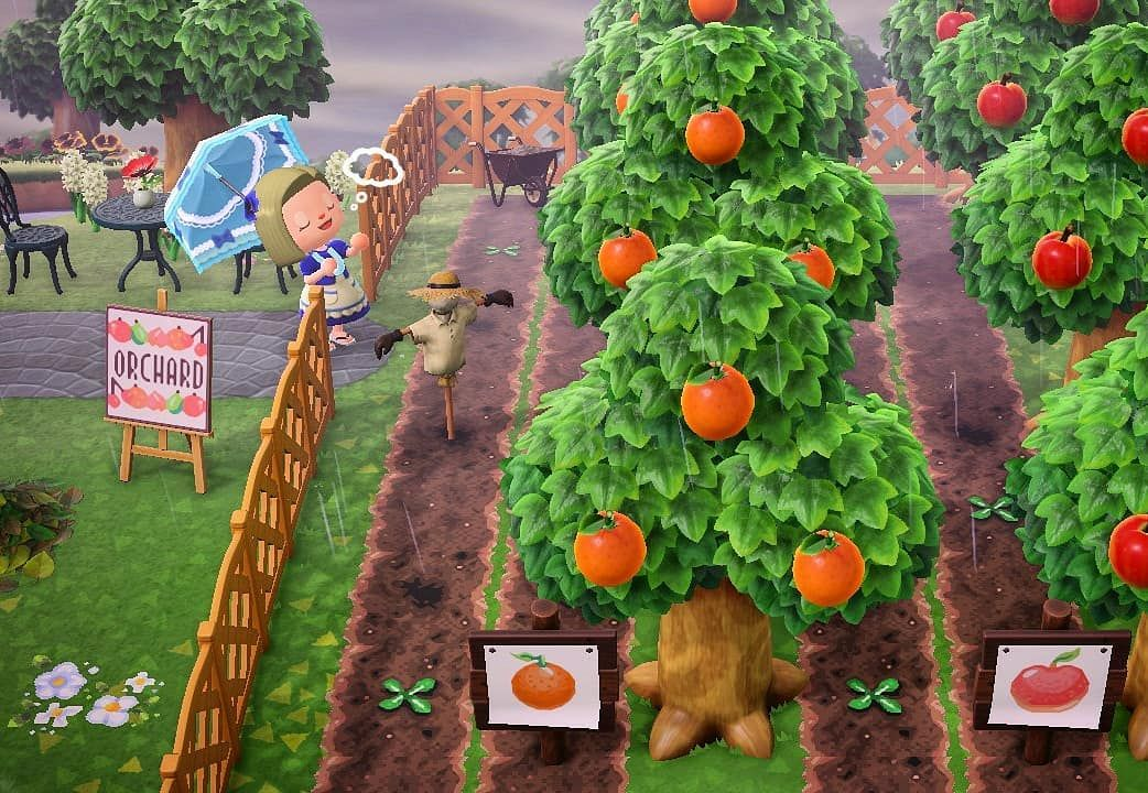 Zofia Animalcrossing Instagram Animal Crossing Animal Crossing Town Tune Animal Crossing Game