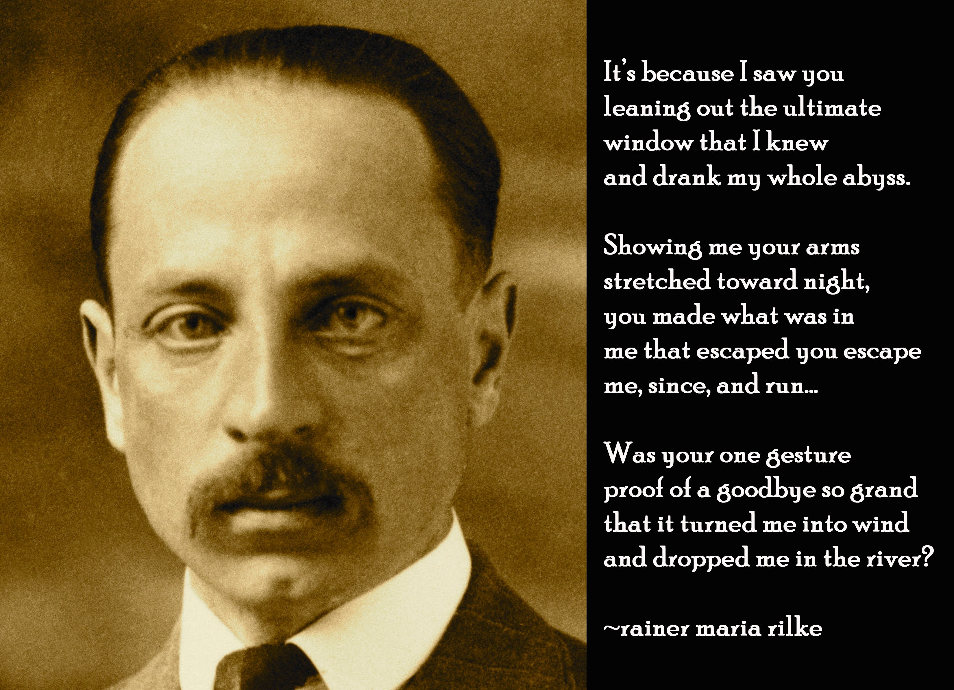 rainer maria rilke The panther, by rainer maria rilke is an insightful poem, and a saddening one of life in a cage may it touch your soul as it has touched mine.