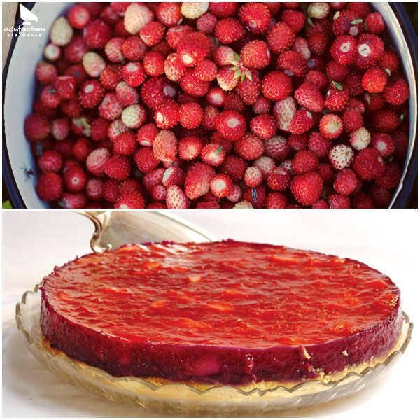 """Erdbeerkuchen aus """"All die schönen Dinge"""" #acufactum #sommer #garten #sommergarten #kuchen #lecker #erdbeeren #backen #summer #garden #cake #delicious #bake #strawberries"""