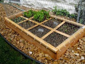New Nostalgia – Square Foot Gardening-Update