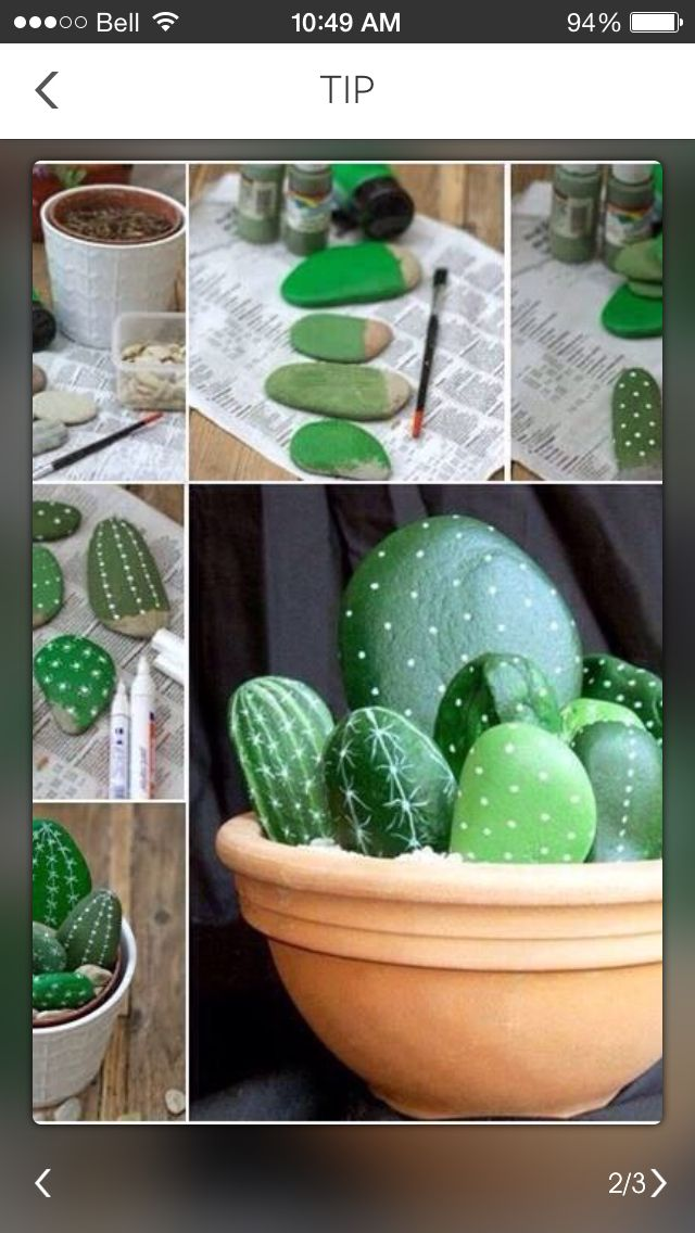 Cactus fait avec des roches