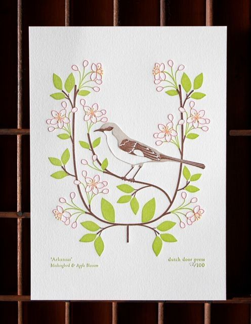 Arkansas State Bird And Flower Mockingbird Apple Blossom From Birds Blooms Of The 50 States South Southern