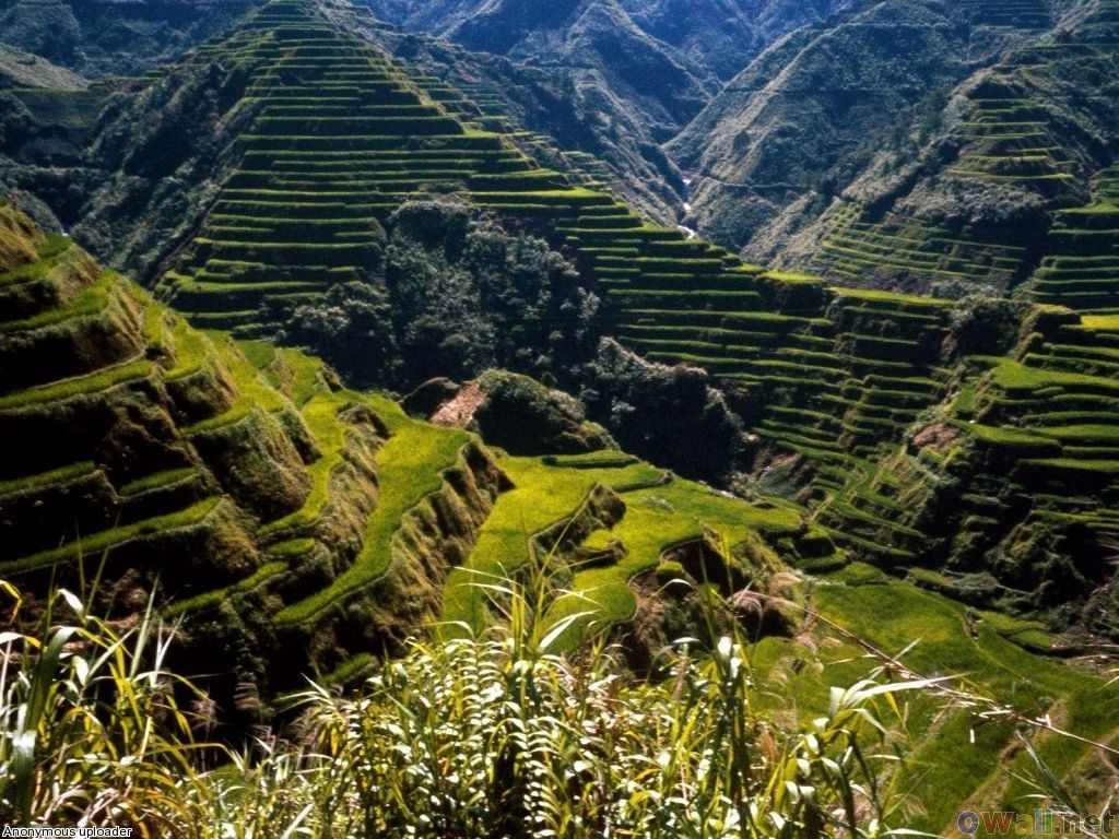32 best images about Baguio City on Pinterest | The philippines ...