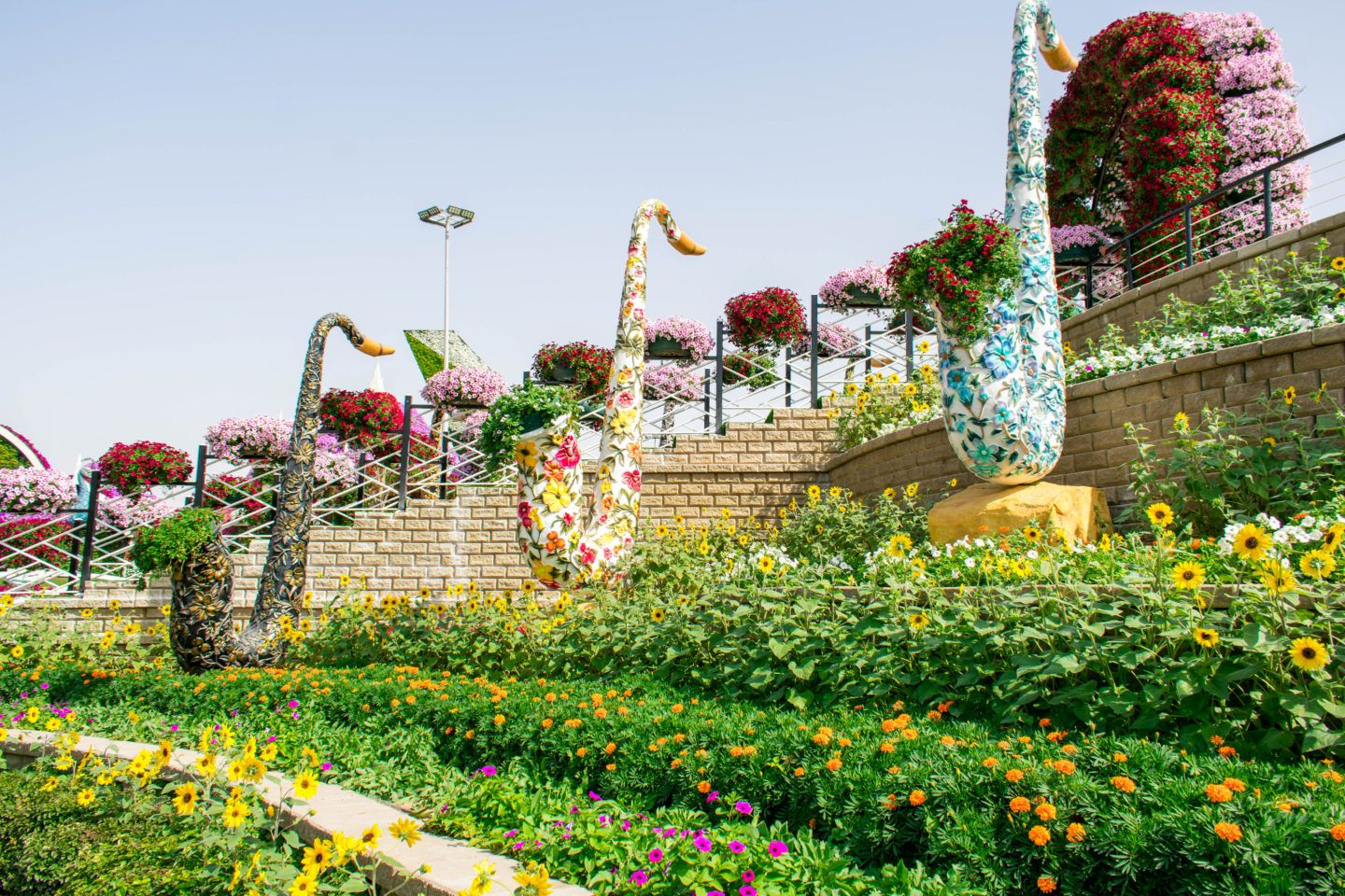 Visiting the Dubai Miracle Gardens is it even worth it