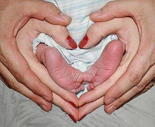 I absolutely love this picture! How sweet and lovely!