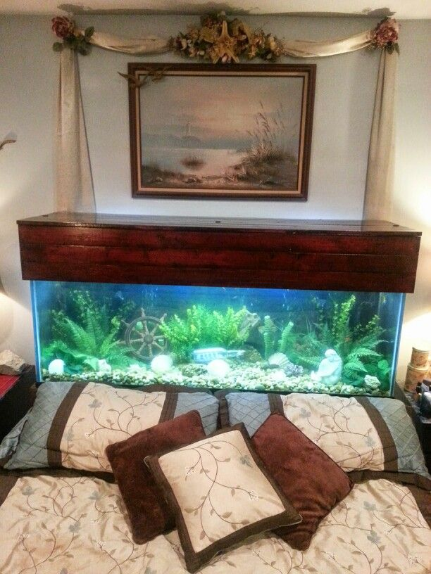 125 gallon aquarium headboard that I designed myselflove it