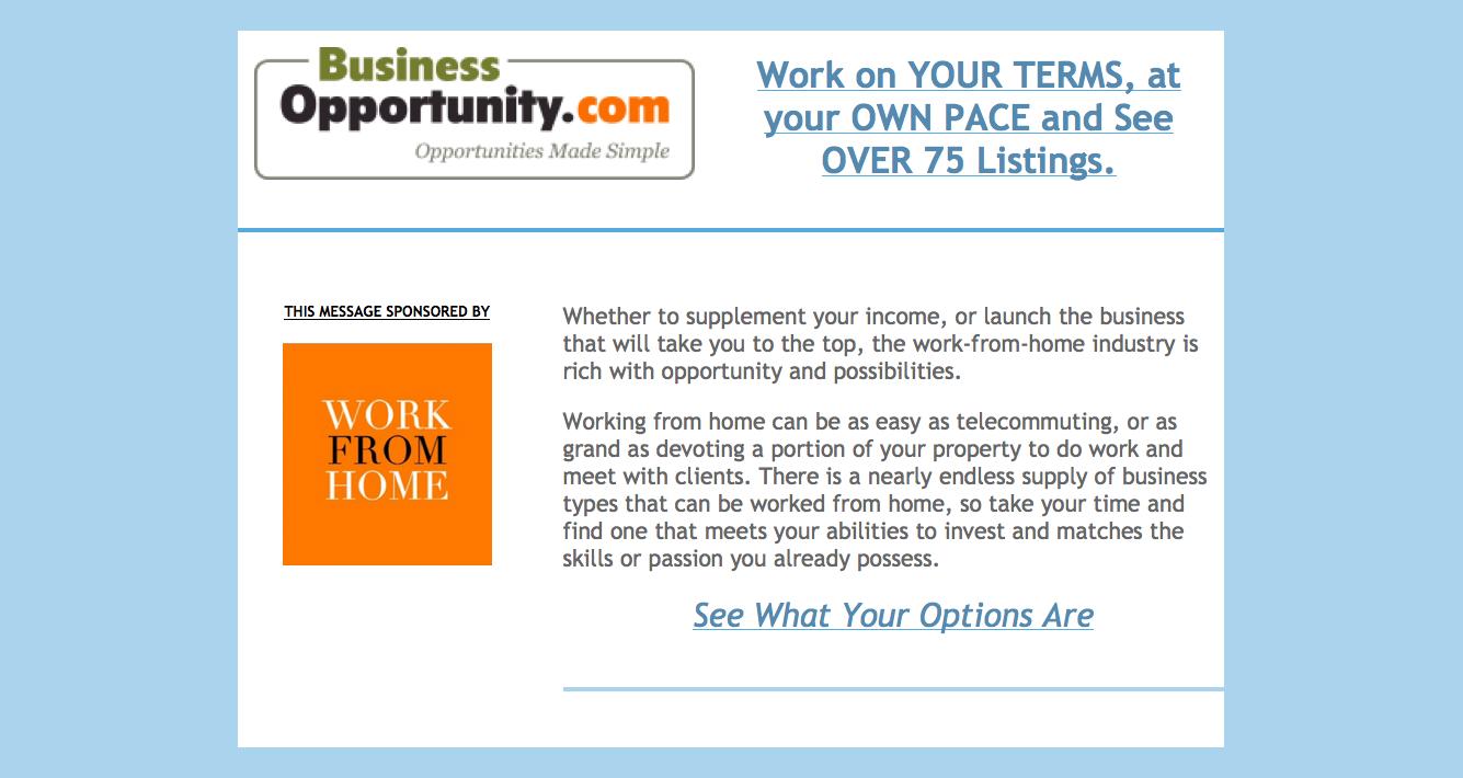 Telecommuting Business Ideas http://www.businessopportunity.com/lp ...