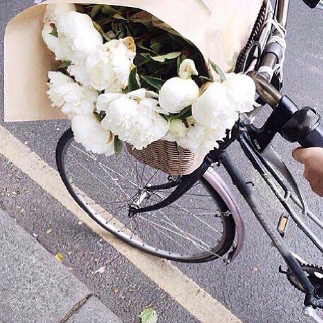 Fresh flowers, biking. City <3 Amsterdam + New York