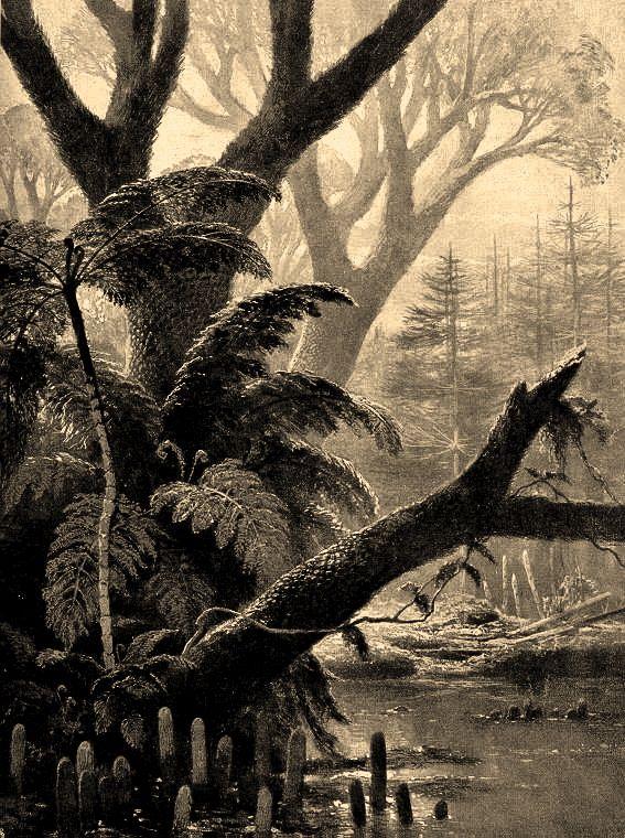 antediluvianechoes: Carboniferous forest scenes