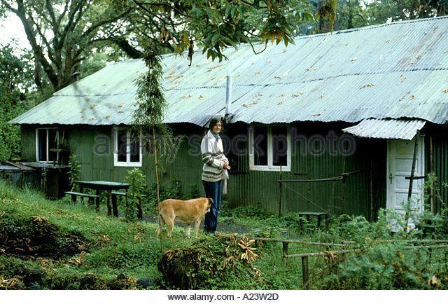 """Résultat de recherche d'images pour """"Diane Fossey maison"""""""
