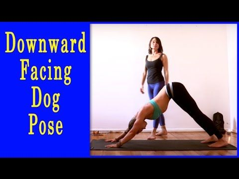 pinyoga poses on downwardfacing dog yoga pose  asana
