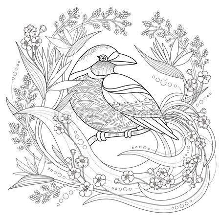 Página para colorear de aves agraciado — Vector de stock | Pajaros ...