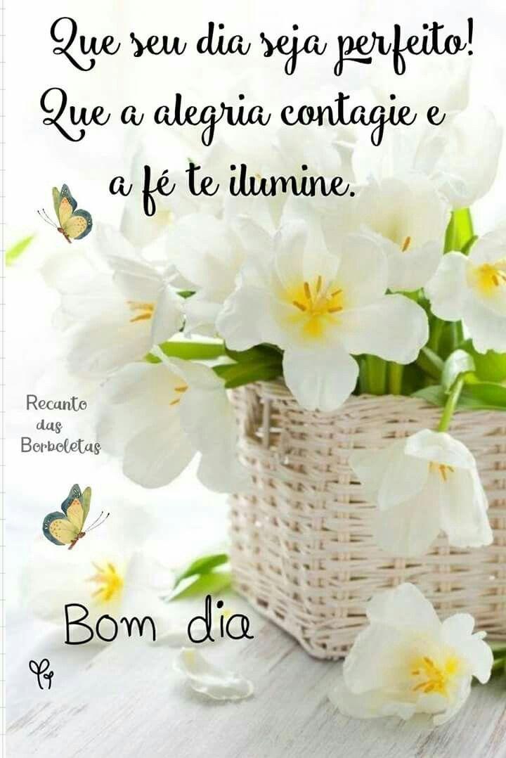 Bom Dia Feliz Sábado Pinterest Frases Frases Bonitas Y Frases