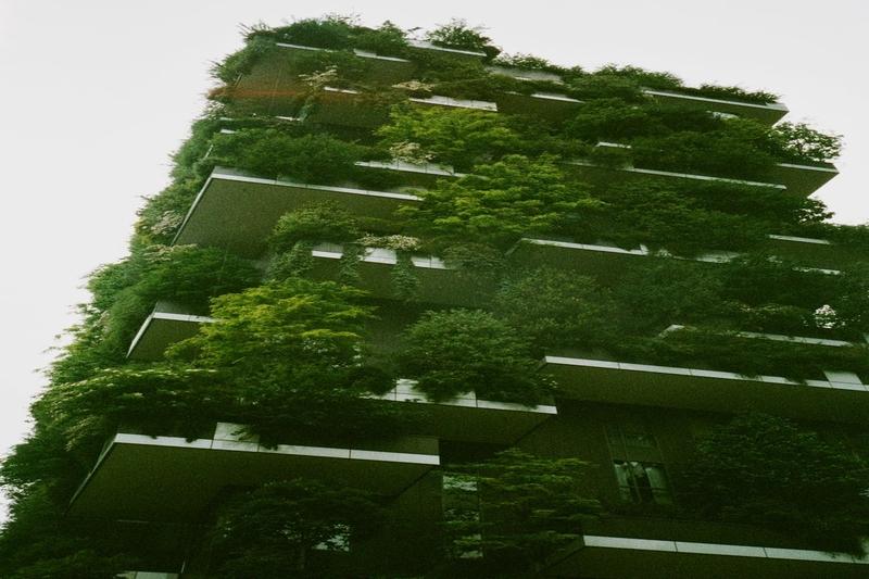 Singapore Green Buildings Google Search In 2020 Urban Garden Hanging Garden Home Improvement Show