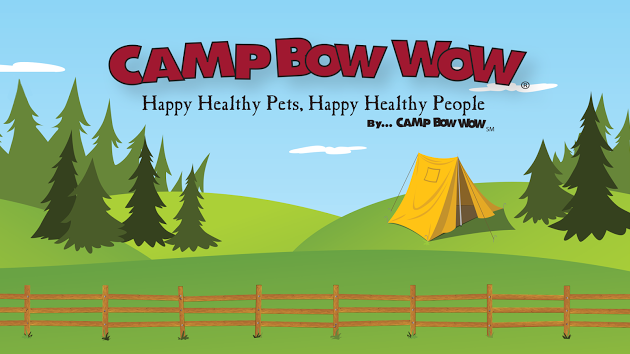 Competitor: Camp Bow Wow