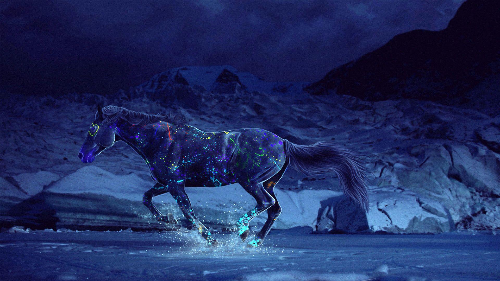 1920x1080 Hd Pics Photos 3d Horse Neon Color Splash Animals Hd