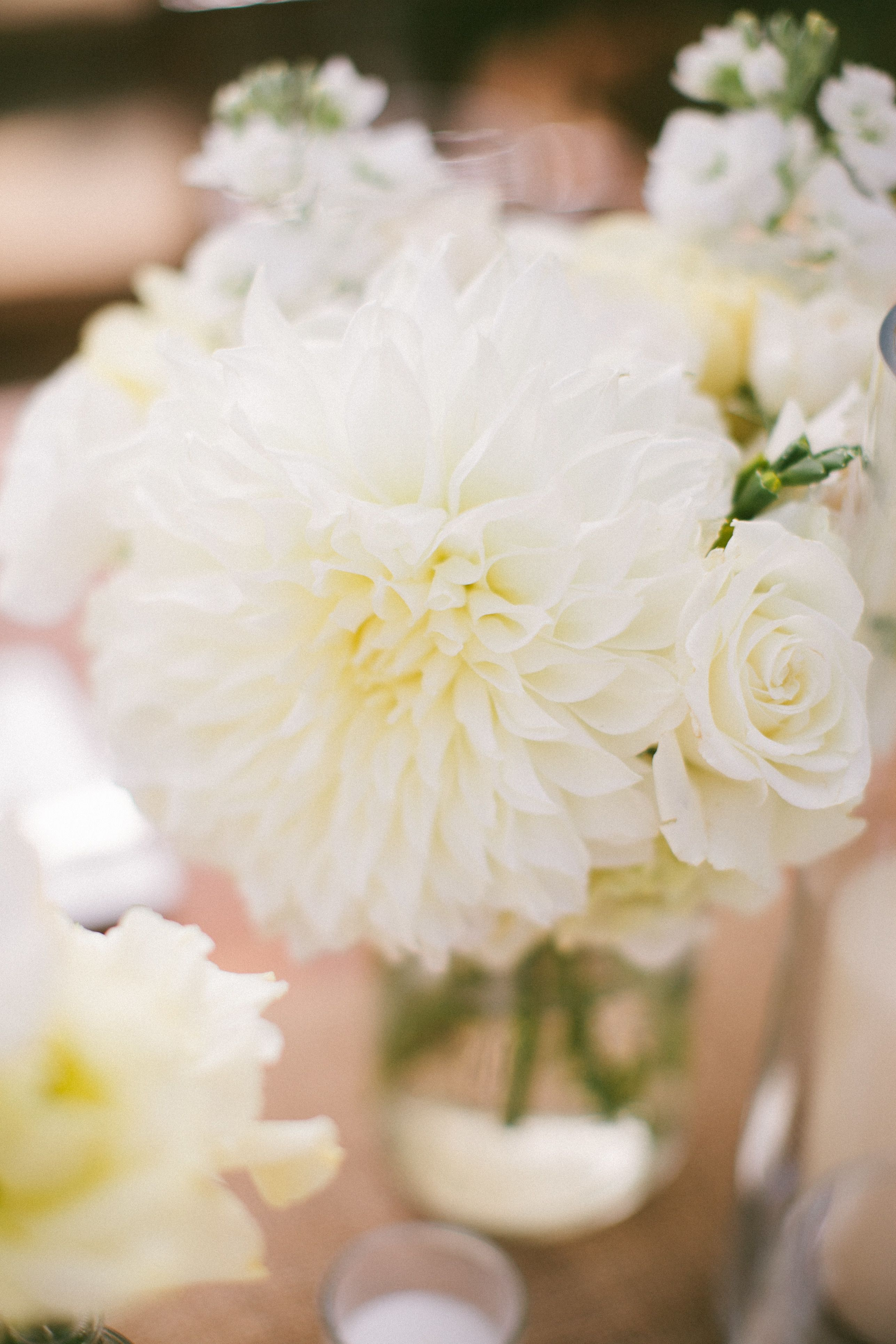 #Dahlias | See the wedding on SMP - http://www.StyleMePretty.com/2014/01/10/malibu-wedding-at-rancho-del-cielo/ Laura Goldenberger Photography