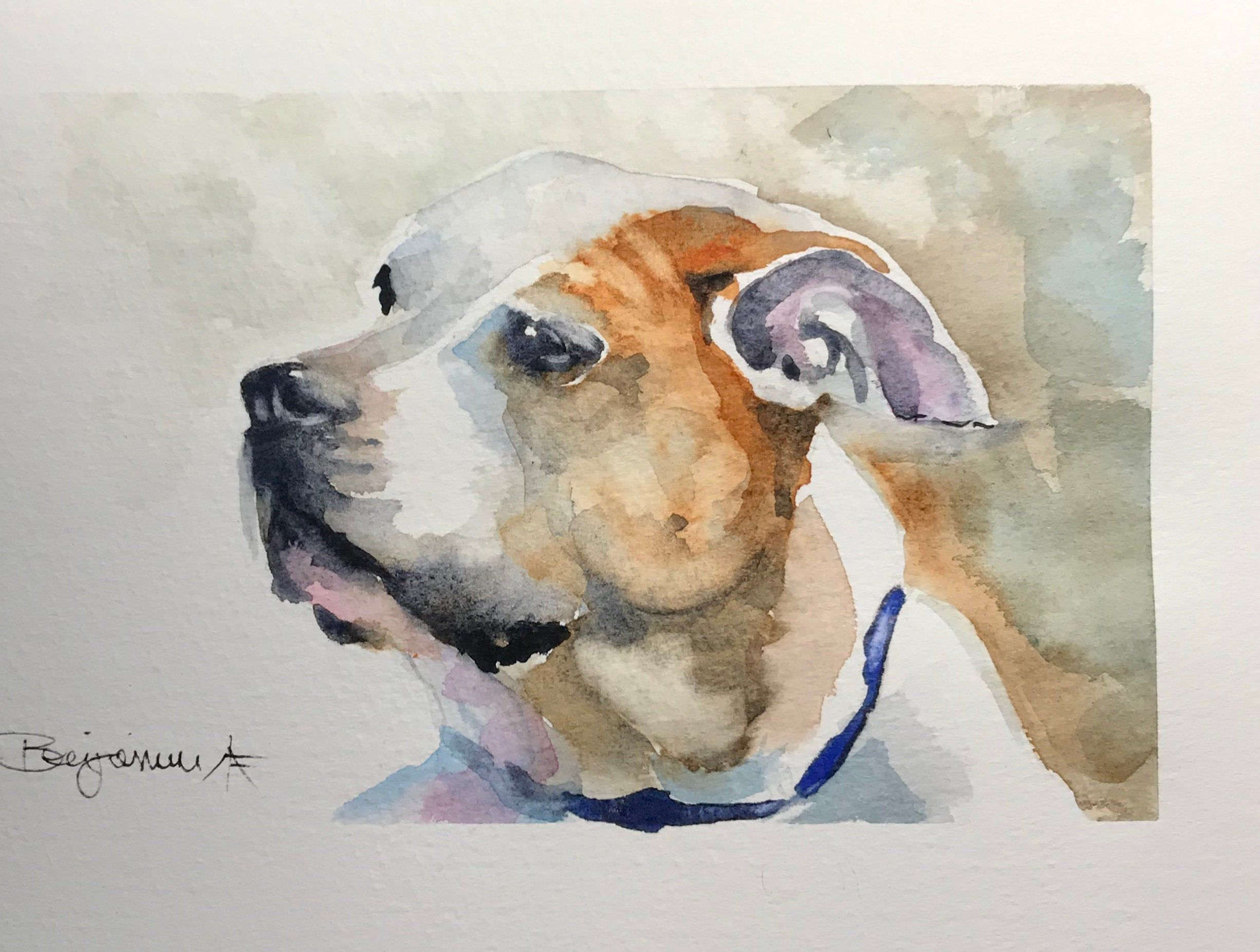 Custom Pet Portrait Realistic Dog Art 8x10 Watercolor Painting