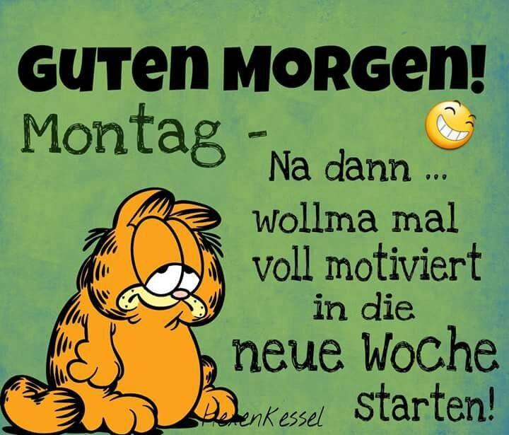 Pin Von Minime484 Auf Spruche Witzige Spruche Zitate Lustig Spruche