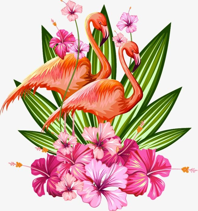 Tropical Plant Material Tropical Plants Flowering Plant Petal Png Transparent Clipart Image And Psd File For Free Download Tropical Background Tropical Art Tropical Flowers