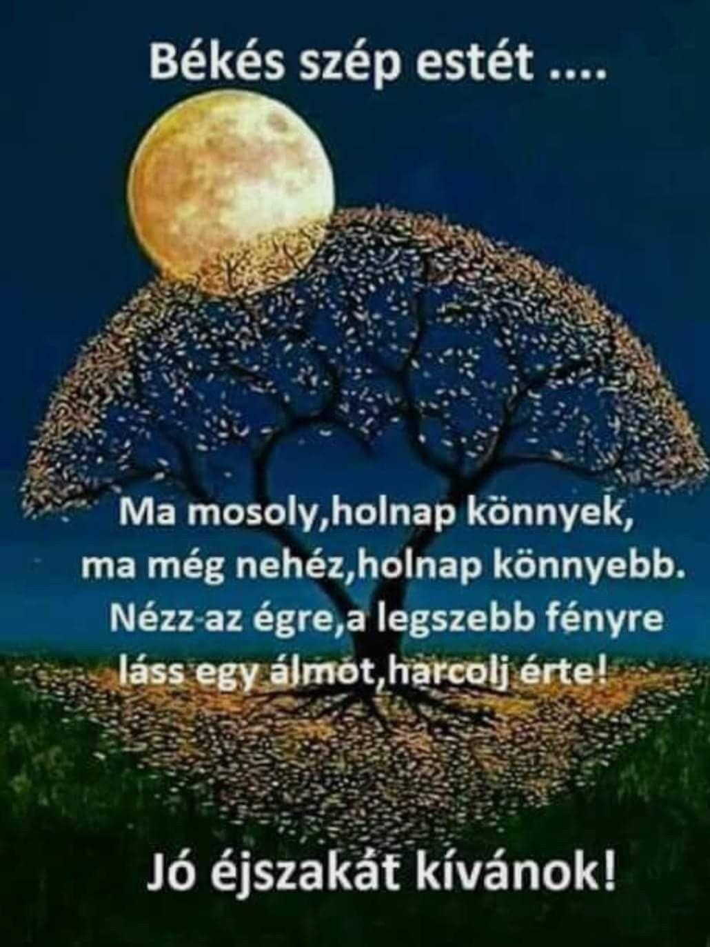 szépséges idézetek Pin by Erzsébet Kovácsné Szabó on idézet   Good morning good night