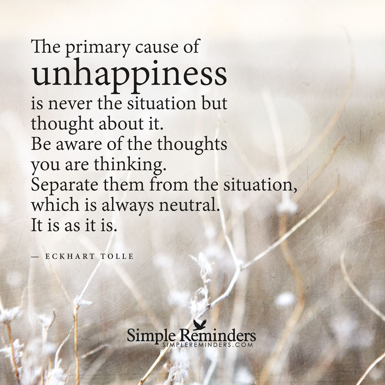 Charmant The Primary Cause Of Unhappiness Is Never The Situation But Your Thoughts  About It. Be Aware Of The Thoughts You Are Thinking.