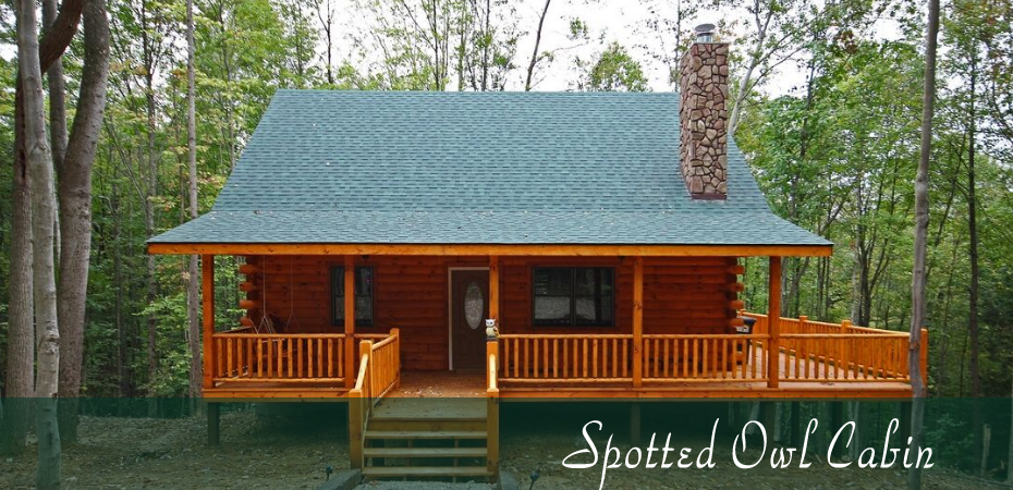 Cabins By The Caves Offers This Brand New Cabin Located In Hocking