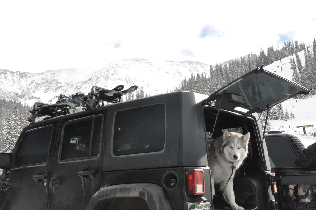Ski Rack Jkowners Com Jeep Wrangler Jk Forum Jeep Dogs Ski Rack Jeep Wrangler