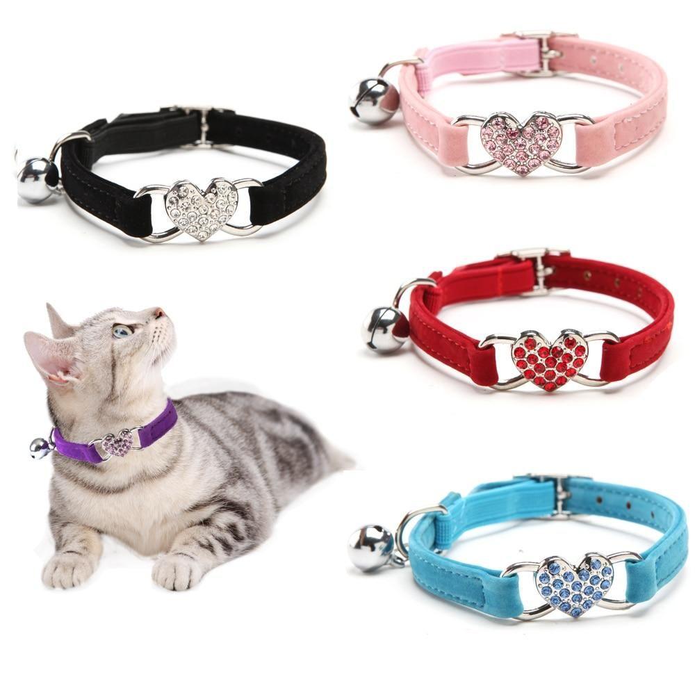 Heart Charm And Bell Pet Collar Pet Hound Kittens Kittycat Cats Kitty Animallovers Instacat Catofthed Cat Collars Kitten Collars Puppy Leash Collars