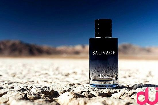 Reviews Dior Sauvage perfume for Men