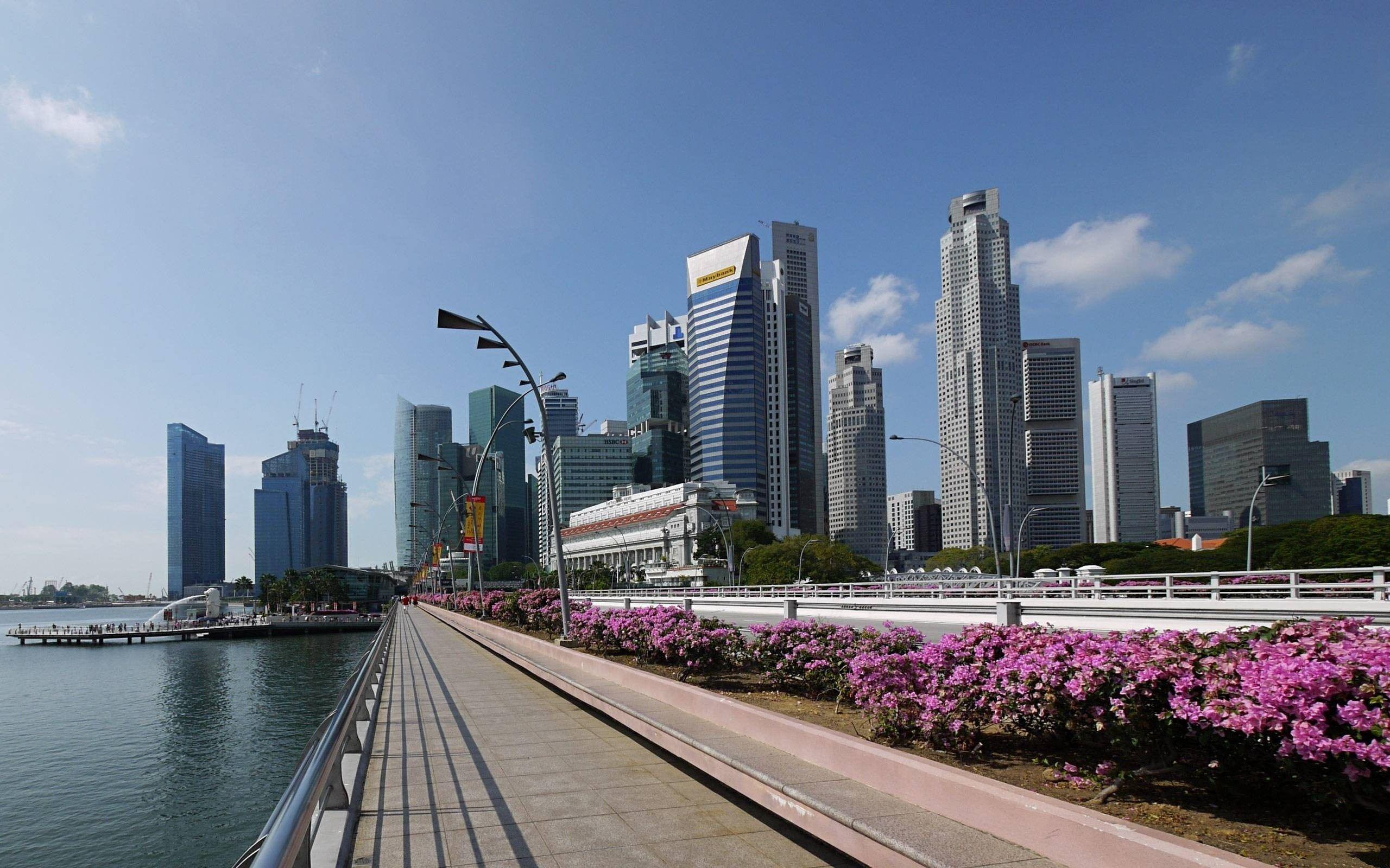 Elazar MK on LinkedIn Inside Singapore's famous Raffles