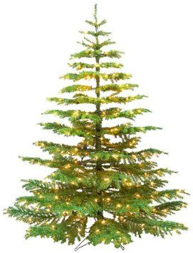 noble fir christmas trees barcana 5 foot noble fir ready trim christmas tree with 250 clear mini - Artificial Silvertip Christmas Tree