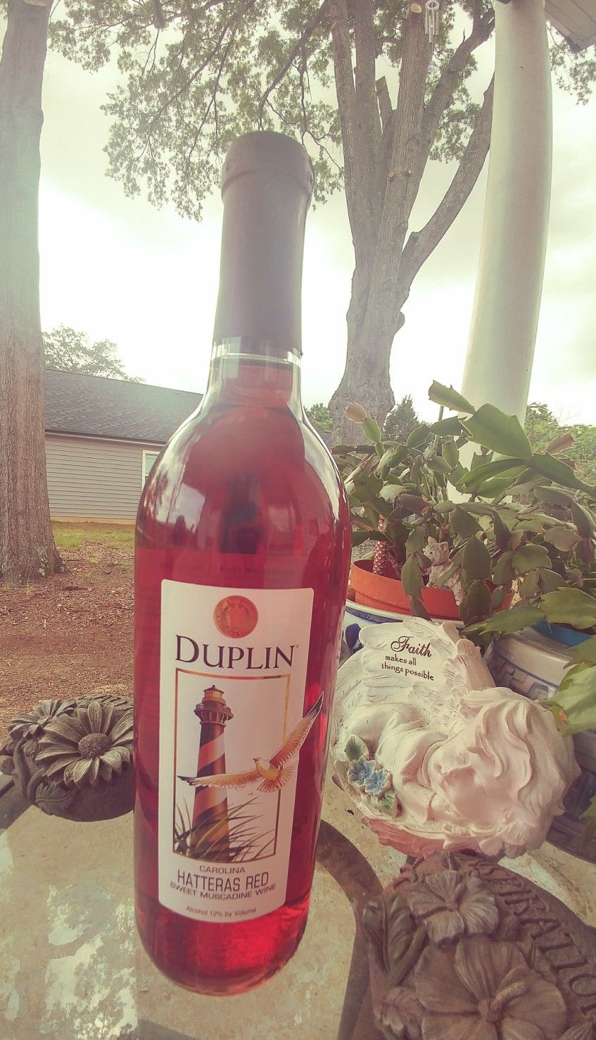 Oh What A Nice Surprise A Friend Gifted Me A Bottle Of One Of My Favorite Wines Duplin S Hatteras Red Sweet Muscadine How Favorite Wine Wine Bottle Wines