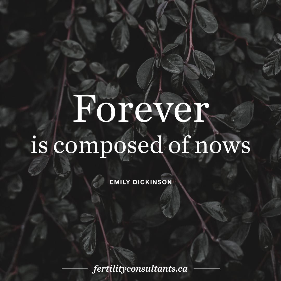 forever is composed of nows. emily dickinson. surrogacy