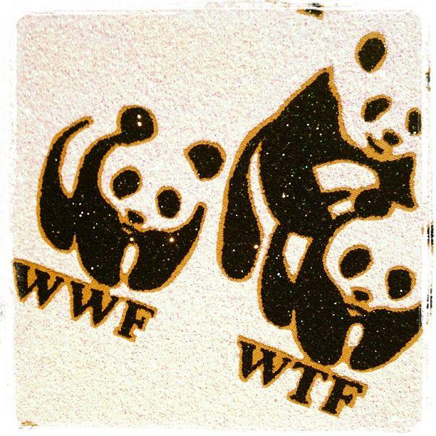 wwf/wtf