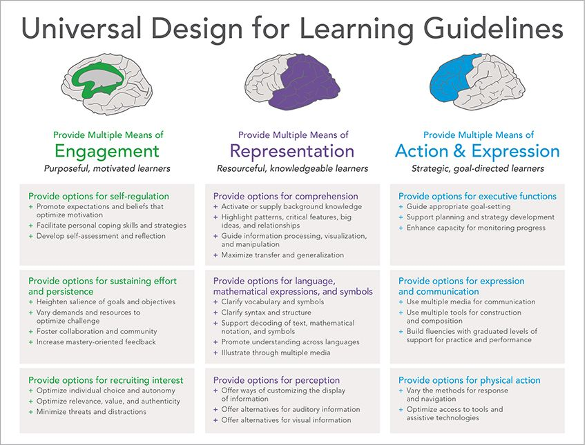 Udl Guidelines Graphic Organizer Universal Design Learning Design Curriculum Design