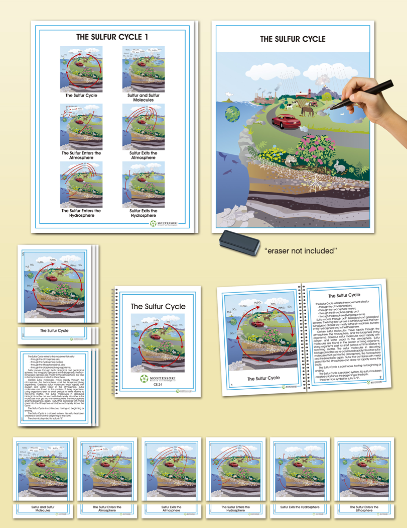 hight resolution of biogeochemical cycles the sulfur cycle montessori research and development