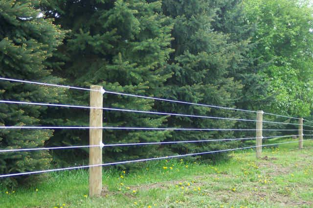 place high tensile cattle fence