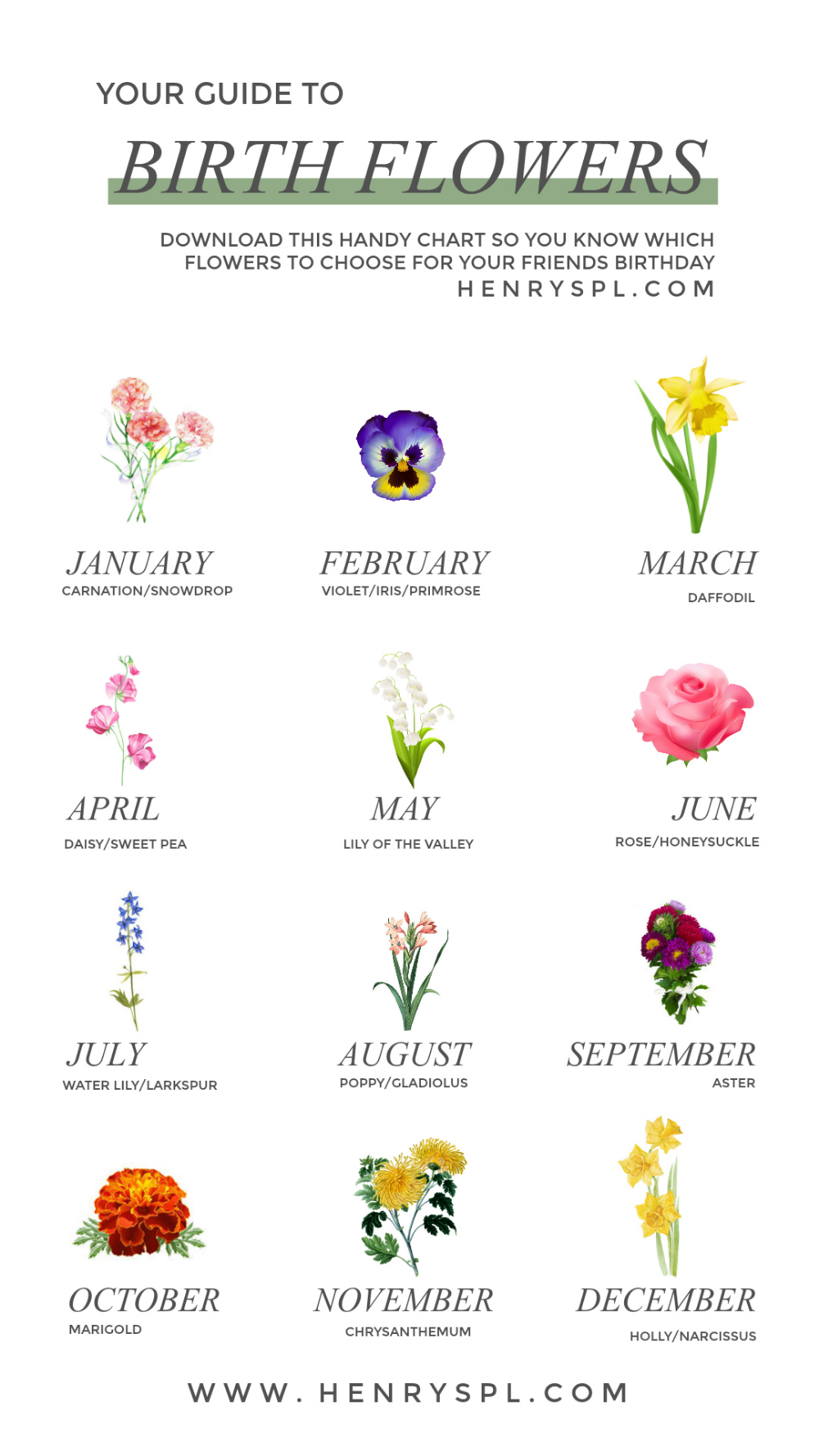 Your Guide To Birth Month Flowers In 2020 Birth Month Flowers Birth Flower Tattoos Month Flowers
