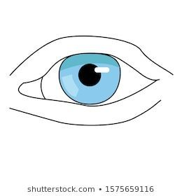 Beautiful eye Simple illustration Ink drawing Abstract fashion illustration of the eye Hand drawn idea for business visit cards templates web salon bannersbrochures Sourc...