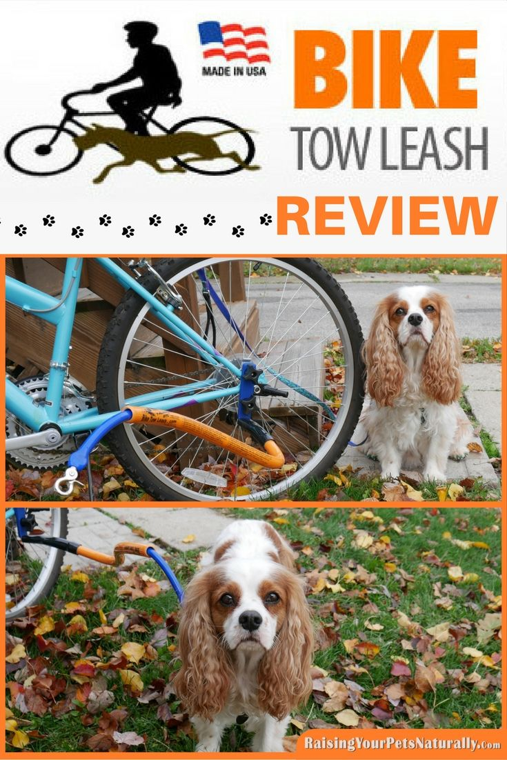 Dog Product Reviews For Active Dogs Bike Tow Leash Review